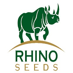 Intellirise client Rhino Seeds